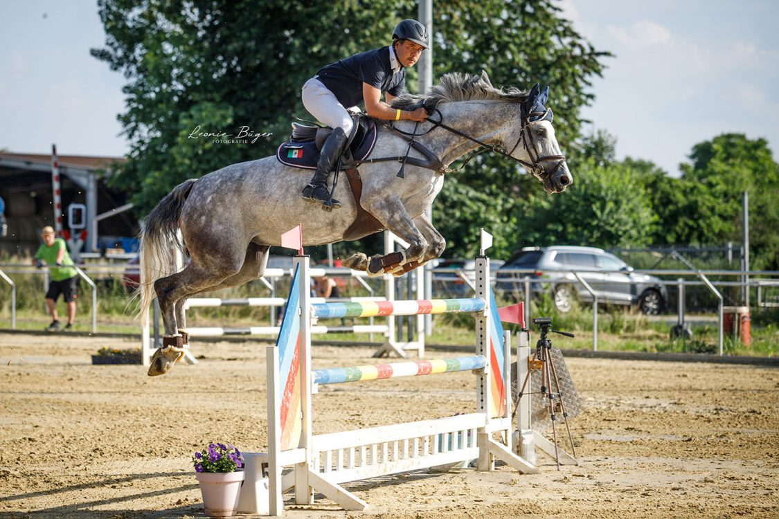 Anibal jumping with grey mare / Anibal saltando con yegua gris