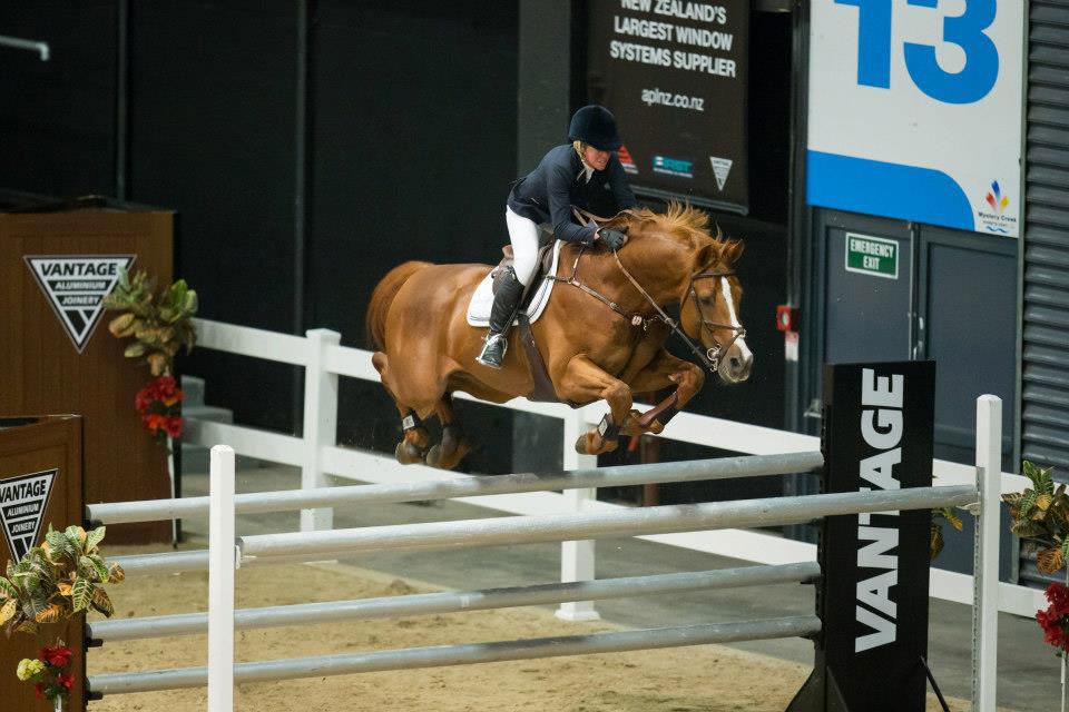 Chestnut stallion jumping grandprix oxer / Entero alazán saltando oxer gran premio