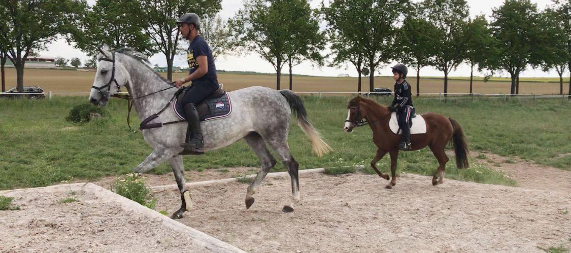 Anibal on grey mare Carlos on chestnut pony / Anibal en yegua gris y Carlos en pony alazana